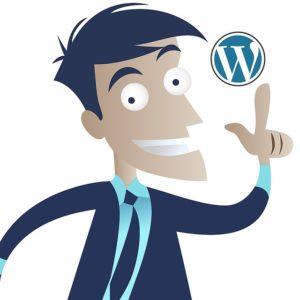 8 Maneras de Optimizar WordPress - Image 1 - www.ionastec.com